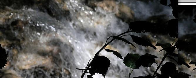 eaux-mugissantes