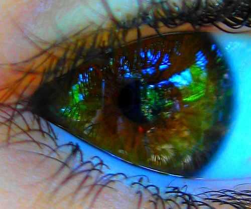 oeil-reflet-paysage