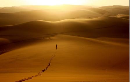 silh-desert