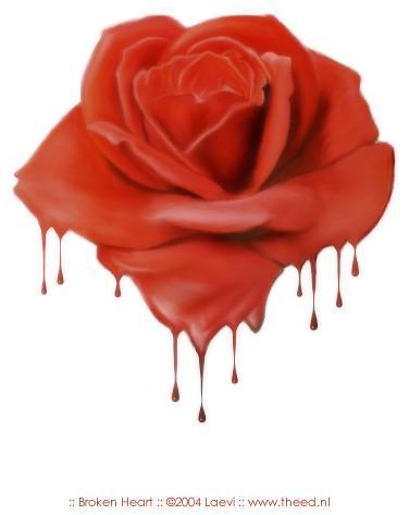 rose sanglante-1 - copie
