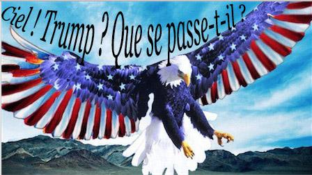 aigle-americain1