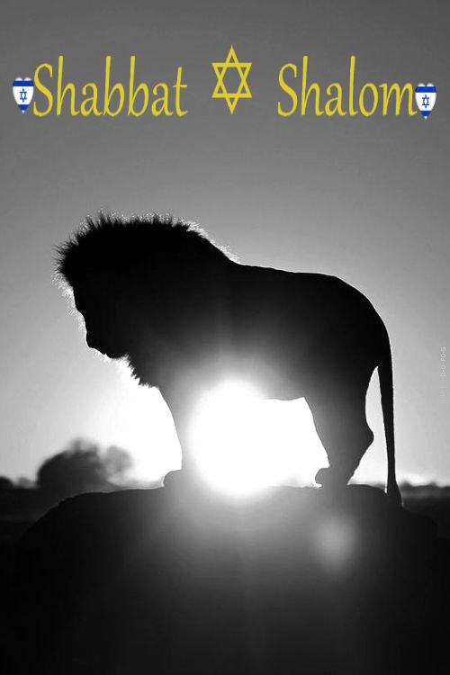 michelle d'astier de la vigerie – shabbat shalom – 8 février 2019